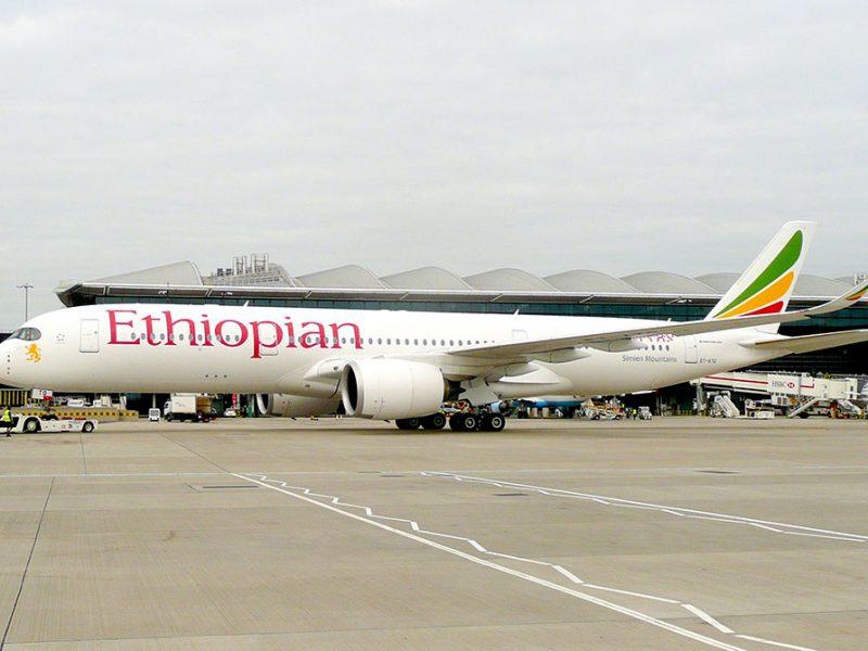 Evaluation of the EC Flight Service, Somalia